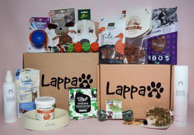 Lappa Paws